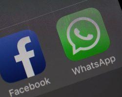 WhatsApp: habrá que aceptar las nuevas condiciones o dejar de usar el servicio de mensajería