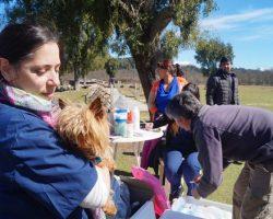 La campaña de vacunación antirrábica gratuita llega al barrio Inacayal
