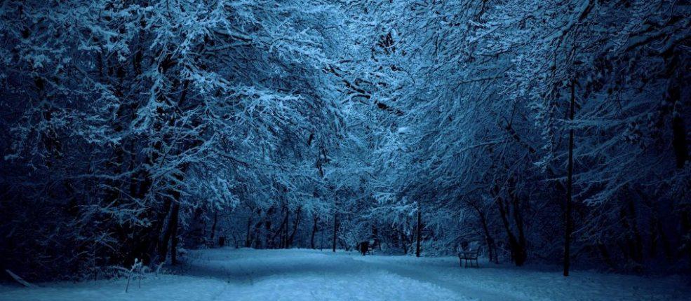 Trasnoche Snow