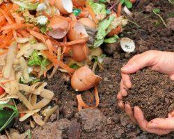Desde GIRSU buscan implementar aboneras para estimular la creación de compost
