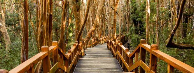 Cierran todos los Parques Nacionales