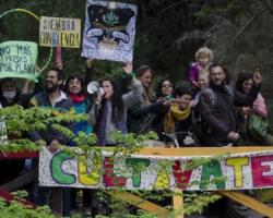 Angostura: Encuentros cannábicos en La Bayer